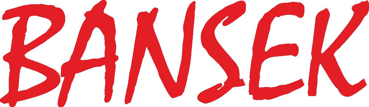 BANSEK komputery notebooki naprawa serwis komputerowy laptopów Łódź